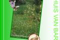 Opening Tuinreservaat 5okt15