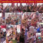 Zomerfeest Concert Huize Liendert 2015